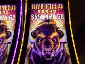 Buffalo Grand Slot Super Jackpot Handpay -Biggest Buffalo Win on YouTube –