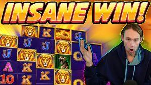 INSANE WIN! Safari Gold BIG WIN – Casino Games from Casinodaddy live stream