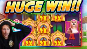 HUGE WIN!!! Dog House BIG WIN – Casino game from CasinoDaddy Live Stream