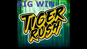 Tiger Rush BIG WIN – NEW SLOT – Casino Win from LIVE Stream