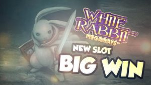 BIG WIN !!!! White Rabbit Big win - Casino - Bónus umferð (Online Casino)