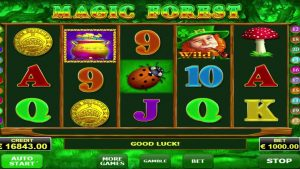 EUR 17,000 magic forest slot MEGA WIN!