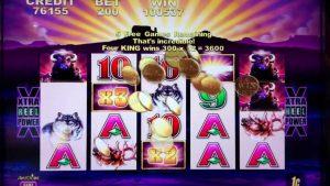 Buffalo Slote Machina Big Win Mirage ad Las Vegas
