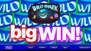 Wild shark casino slot big win €€ 171300 EUROS!!