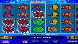 Wild shark online casino MEGA WIN – €173,600