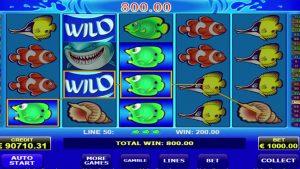 wild shark casino slot  win €184,800