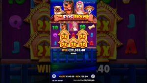 Son Parayla Büyük Vurgun | The Dog House | Slot Big Win!!!!