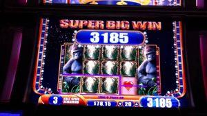 Mega Big Win of Queen of the Wild Casino Machine Slot Game Bonus
