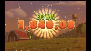 Mega Big Win Casino #1