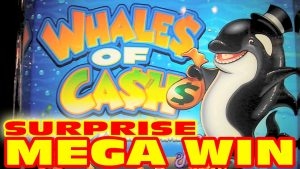 Whales of Cash - SORPRESA MEGA BIG WIN - Bonus di slot machine