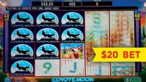 Coyote Сарны оролт - $ 20-ийн дээд хязгаар - БИГИЙН WIN LIVE PLAY!