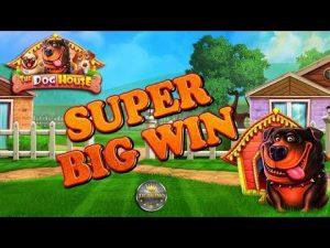 SUPER BIG WIN BEI THE DOG HOUSE (PRAGMATIC PLAY) – 5€ EINSATZ!
