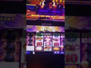 Casino bivol velika pobjeda