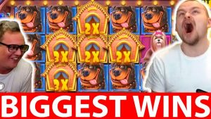 Streamers Biggest Casino Wins #30 CRAZY WIN THE DOG HOUSE SLOT | Daskelelele & Ripnpip