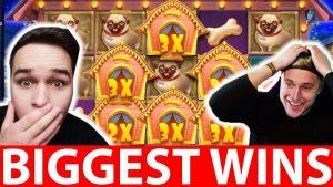 INSANE CASINO BIG WIN THE DOG HOUSE فتحة   CasinoDaddy و LiveSlot   واقع الكازينو