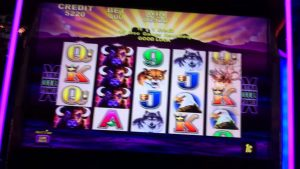 80+ spin bonus buffalo $4 max bet large WIN Parx casino bonus pokie