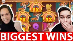 Biggest Streamers Wins #22 THE domestic dog HOUSE LIVE SLOT & casino bonus DADDY HUGE WIN