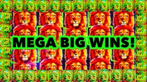 **MEGA large WINS!** My Best Wins On Rex Of Africa Slot Machine component division 1!