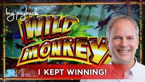 Wild Monkeys Slot – large WIN SESSION, LOVED IT!