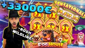domestic dog House +33000€ SENSATIONAL large WIN! ROSHTEIN Top 5 Wins of the calendar week