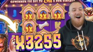 Insane win x3255 on The domestic dog House – Top 5 Best wins of the calendar week slots