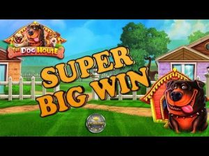 SUPER large WIN BEI THE domestic dog HOUSE (PRAGMATIC PLAY) – 3€ EINSATZ!