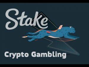 🎲 Stake.com ► EPIC MOMENTS inwards BITCOIN GAMBLING 👌 large WIN 💰