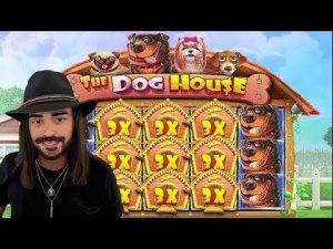 TOP 5 STREAMERS BIGGEST WINS ★ tape WIN €51,572 ON THE domestic dog HOUSE (ROSHTEIN)