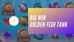 large WIN – Golden Fish Tank