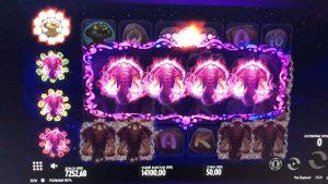 pinkish ELEPHANTS large WIN