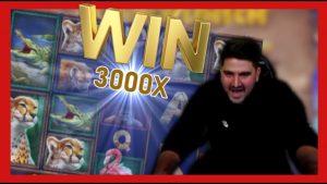 🔥 3000x Great rhinoceros large striking + Ramses volume HUGE WIN   casino bonus Twitch current Slotroom 24/7