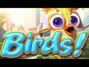 ♠️ Birds