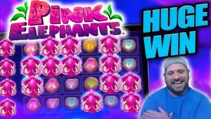 HANYA WIN ON ELEPHANTS pinkish 2 !! 5 PANGKAT!