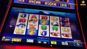 Buffalo Deluxe 💵large-WIN💵 @Chumash Casino Bonus