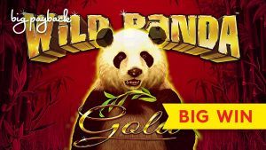 large WIN, MAX BET! Wild Panda Au Slot – GREAT SESSION!