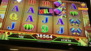 large WIN on Piñatas Ole @ Chumash casino bonus
