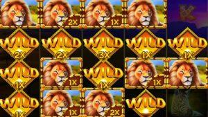 👑 large Win Serengeti Kings 5 Scatter Bonus 💰 A Slot yesteryear Netent.