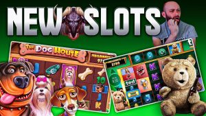 novel Online Slots! domestic dog House Megaways, Ted Megaways, & HUGE win on Win-a-Beest!