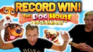 tape WIN!!!! Canis familiaris HOUSE 2 MEGAWAYS large WIN – EXCLUSIVE casino bonus Slot from Casinodaddy LIVE flow
