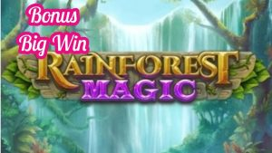 RAINFOREST MAGIC BONUS WIN Big