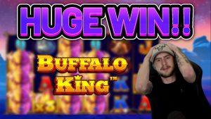 HUGE WIN!!!! BUFFALO Rex large WIN –  casino bonus slot from Casinodaddy LIVE current