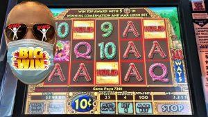 ⭐️RECAP⭐️ их хэмжээний WINS from TRIP to Casino bonus DU LAC LEAMY!