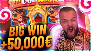 Streamer Insane win 50.000€ on The domestic dog House Slot – Top 5 Biggest Wins of calendar week