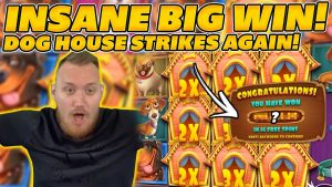 THE Rex OF Canis familiaris HOUSE STRIKES ane time to a greater extent than! INSANE HUGE WIN on €50 STAKE! large WIN on Online Slots!