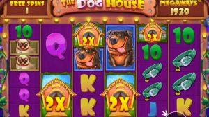 👑 The Canis familiaris House Megaways large Win Bonus Buys 💰 (Pragmatic Play).