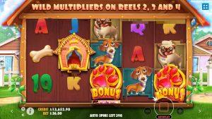 casino bonus Melegi | domestic dog House Slot | large Win