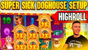 domestic dog HOUSE HIGHROLL BONUS GOING INSANE | HUGE WIN ON PRAGMATIC PLAY ONLINE SLOT MACHINE