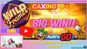 large Win From Wild Frames Slot!!
