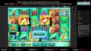 Raging rhinoceros large Win   WMS   Novibet casino bonus