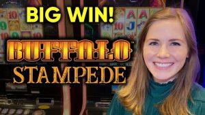 MENANG besar! Menemukan Mesin Slot Buffalo Stampede! Sesi Beruntung!